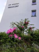 Dom Wczasowy Graniczny