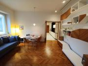 Modernist apartment in the city centre