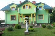W zieleni