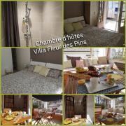 Villa Fleur des Pins Chambre dHôtes LES PINS