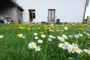 Delux Arbeiter Ferien Wohnung Garten Free Wifi