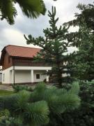 Pokoje Kasztanowa