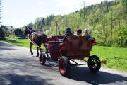 Agroturystyka u Czepiela
