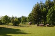 Green Field Apartments