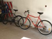 Family Apartment w cenie 4 rowery plaża łódka wiosłowa