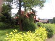 Apartament u Wolskich