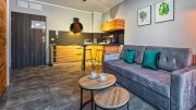 Apartament Studio Holiday Mountain Residence 5D Apartamenty