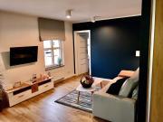 Apartament Blue Forest
