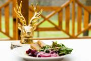 Złoty Jeleń restauracja i dom gościnny