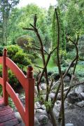 Ogród Shinrin Yoku Odpoczynek w Lesie