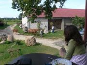 Agroturystyka Ranczo na Wzgórzu
