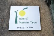 Lemon Tree Hostel