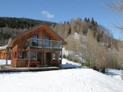 Holiday home Chaletinaustria