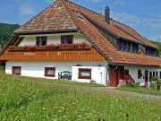 Luscious apartment in Black Forest with free WiFi