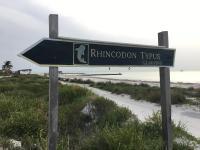 Rhincodon Typus, Hotely - Holbox Island