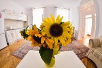 Apartament A&F, Ferienwohnungen - Sibiu
