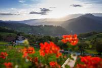 Bran Monte Crai Chalet, Vendégházak - Törcsvár