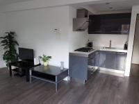 Cosy apartment in the center with a FREE PARKING PER REQUEST, Apartmány - Eindhoven