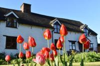 Glencoed B&B