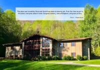 The Hive Lodge-with views of the Smokies