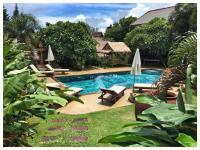 Visit Natural Detox Resort, Hotel - Lamai