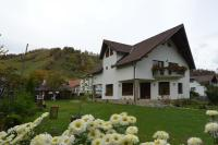 Bucuria Muntelui, Penziony - Bran