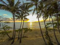Marlin Waters Beachfront Apartments, Aparthotels - Palm Cove