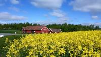 Red Bird Farm, Bed & Breakfasts - Ystad