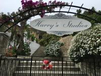 Harry`s Studios