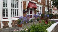 Tregonwell House - Guest House (B&B)