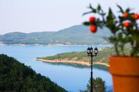 Gis Chrisopeleia Lake View