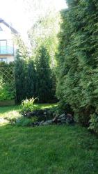 noclegi Hel Dom z tarasem, ogródkiem i słońcem