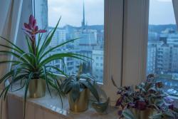 noclegi Gdynia Apartament Widokówka
