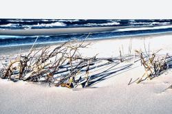 noclegi Jastarnia Willa Cove