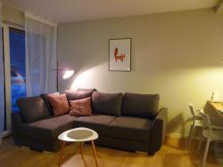 noclegi Szczyrk Apartament z liskiem