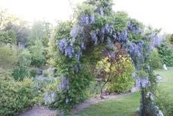 noclegi Darłowo Domki w ogrodach Magra