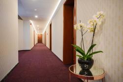 noclegi Ustroń Hotel Belweder