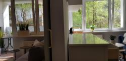 noclegi Gdynia Apartament z widokiem na las