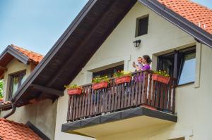 Apartments Josipovic, Appartamenti  Zlatibor - big - 41