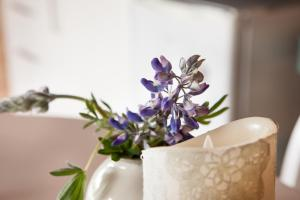 obrázek - Kaldá Lyngholt Holiday Homes