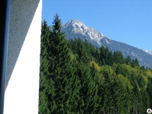 obrázek - Alpen Appartement