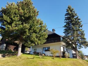 Gästehaus Bartlehof - Grafenhausen