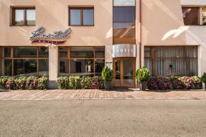 Boutique Hotel Bristol, Hotels  Košice - big - 1