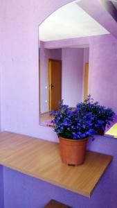 PS Apartments, Affittacamere  Peštani - big - 46