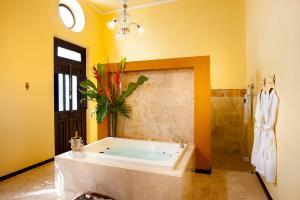 Casa Azul Monumento Historico, Hotely  Mérida - big - 10