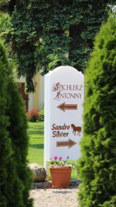 Hotel Sandro Silver