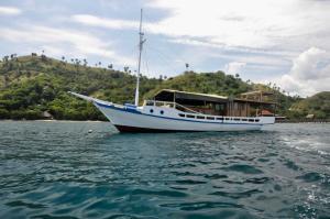 obrázek - Boat Trip To Komodo