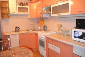 Two-room apartment on Druzhby 99 - Solodniki