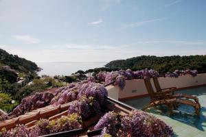 Hotel Galli, Hotels  Campo nell'Elba - big - 47