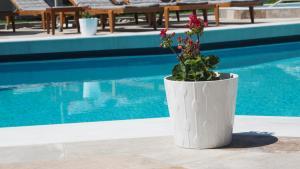 Hostels e Albergues - Evridiki Hotel